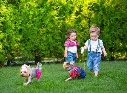 Spelende kinderen in tuin