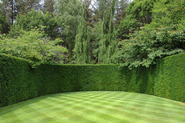Tuinontwerp aanleg onderhoud kunstgras betonklinkers en afsluitingen de groenbroeders 18