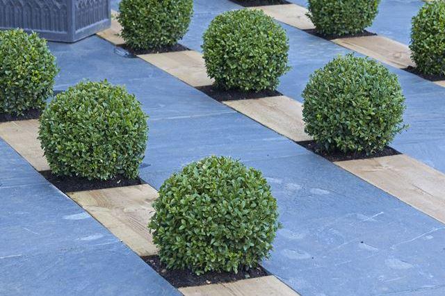 Tuinontwerp aanleg onderhoud kunstgras betonklinkers en afsluitingen de groenbroeders 30