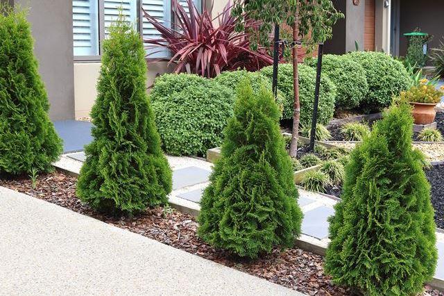 Tuinontwerp aanleg onderhoud kunstgras betonklinkers en afsluitingen de groenbroeders 32